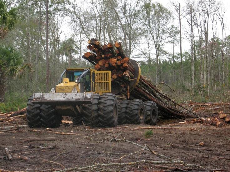 lesnícka technika
